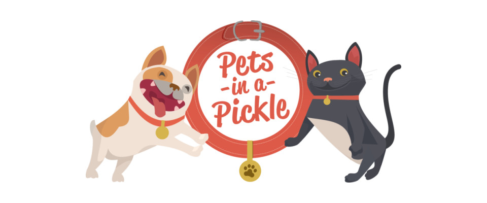 Pets in a Pickle